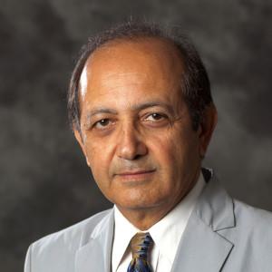 Behrokh Khoshnevis